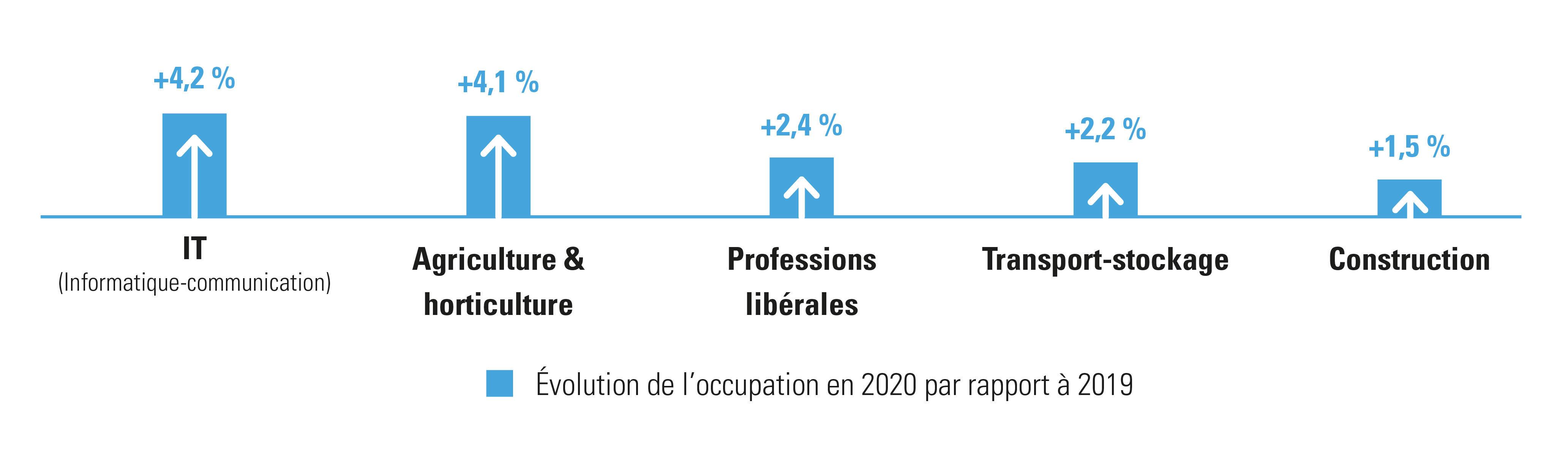 Secteurs qui ont enregistré la plus forte croissance en 2020 en matière de personnel occupé